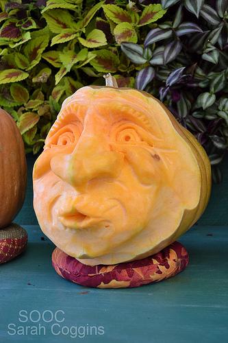 Shoot and Edit: Pumpkin SOOC