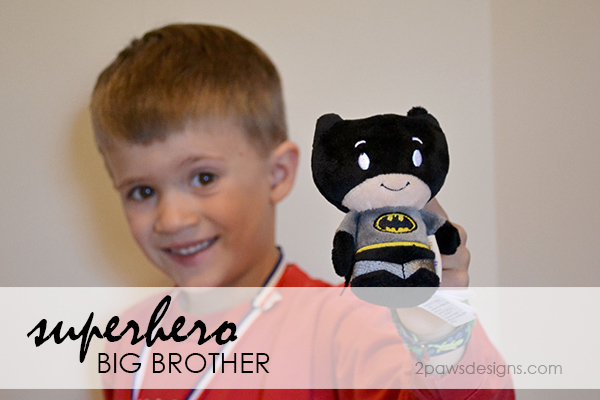 Superhero Big Brother Gift