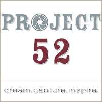 Project 52 Photos