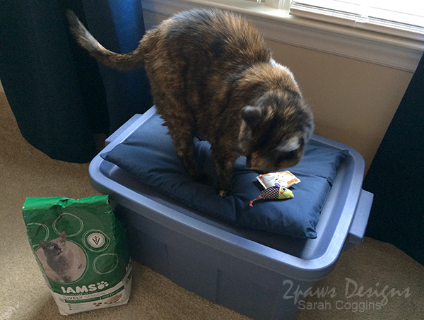 DIY Cat Bed with Storage