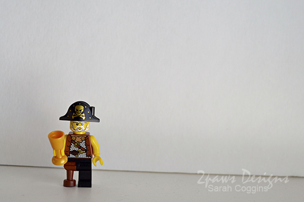 Lego Pirate Party: Minifigure Photo