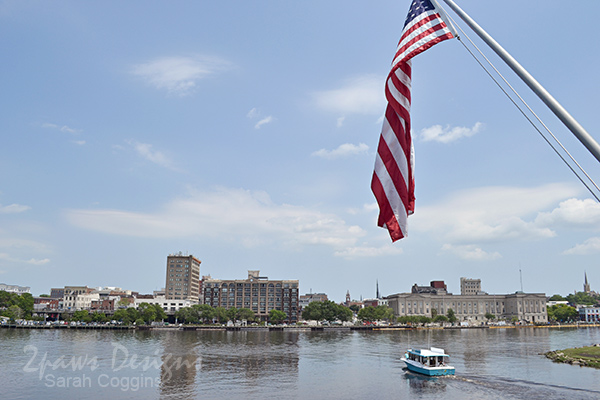 Memorial Day: American Flag over the Cape Fear River