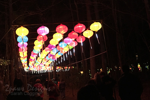 NC Chinese Lantern Festival: Entry Lanterns