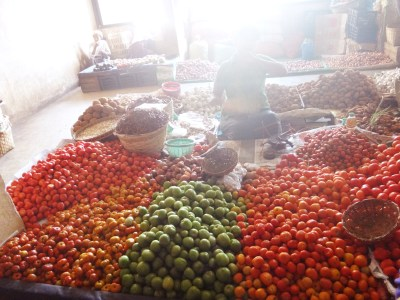 Tomatoes for sale.