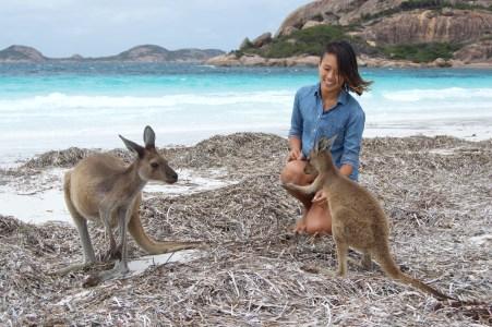Kangaroo friends!