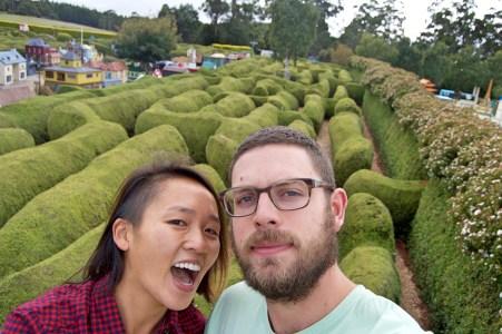 Hedge mazes!