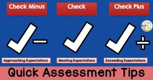 Quick Assessment Tips