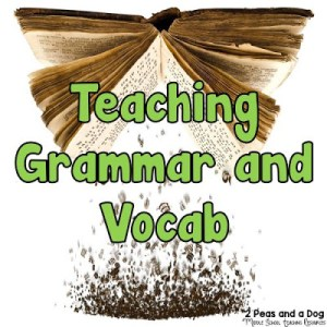 Effective Ideas for Teaching Grammar and Vocabulary