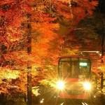 eiden-autumn