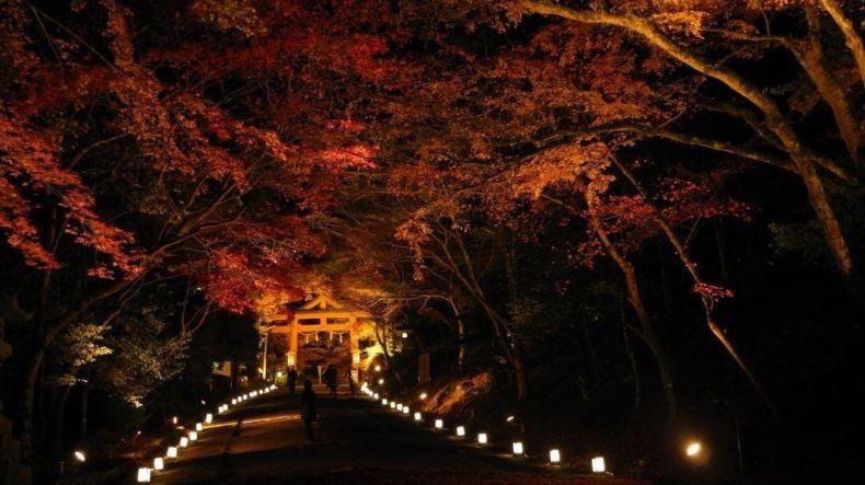 hiyoshi-taisha illumination