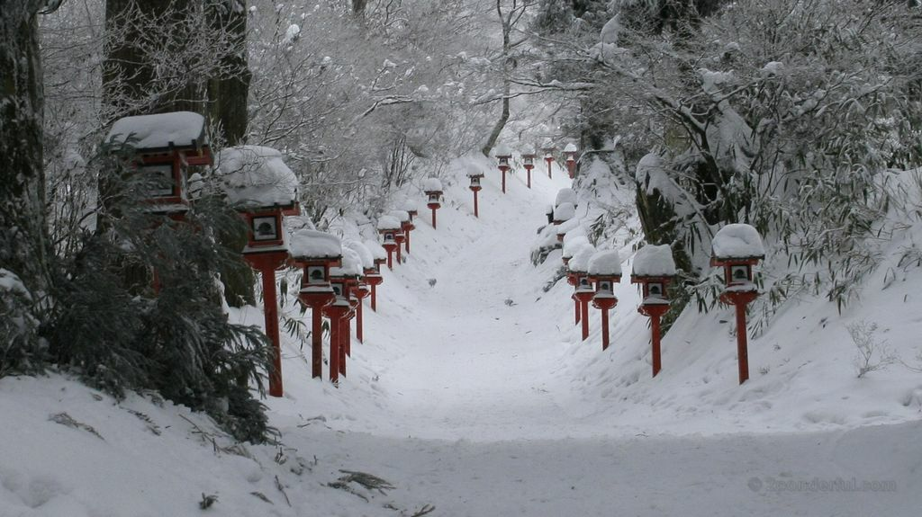 snowy lanterns