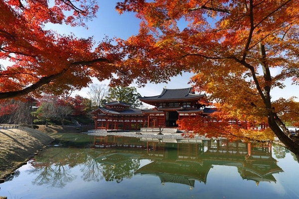 byodo-in autumn