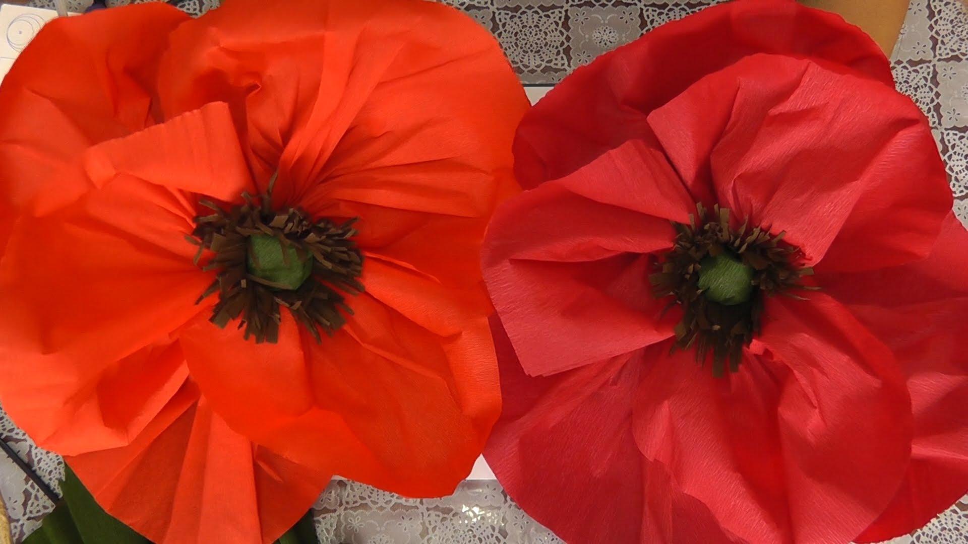 Appendi i fiori sul supporto a parete. Dai tubi di carta igienica