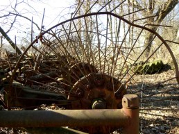 DSCN2241 2011-03-08 Reddebeitz Heuwender