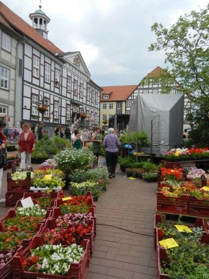 2011-05-22 Lüchow Spargelsonntag nami 020 Blumen Markt