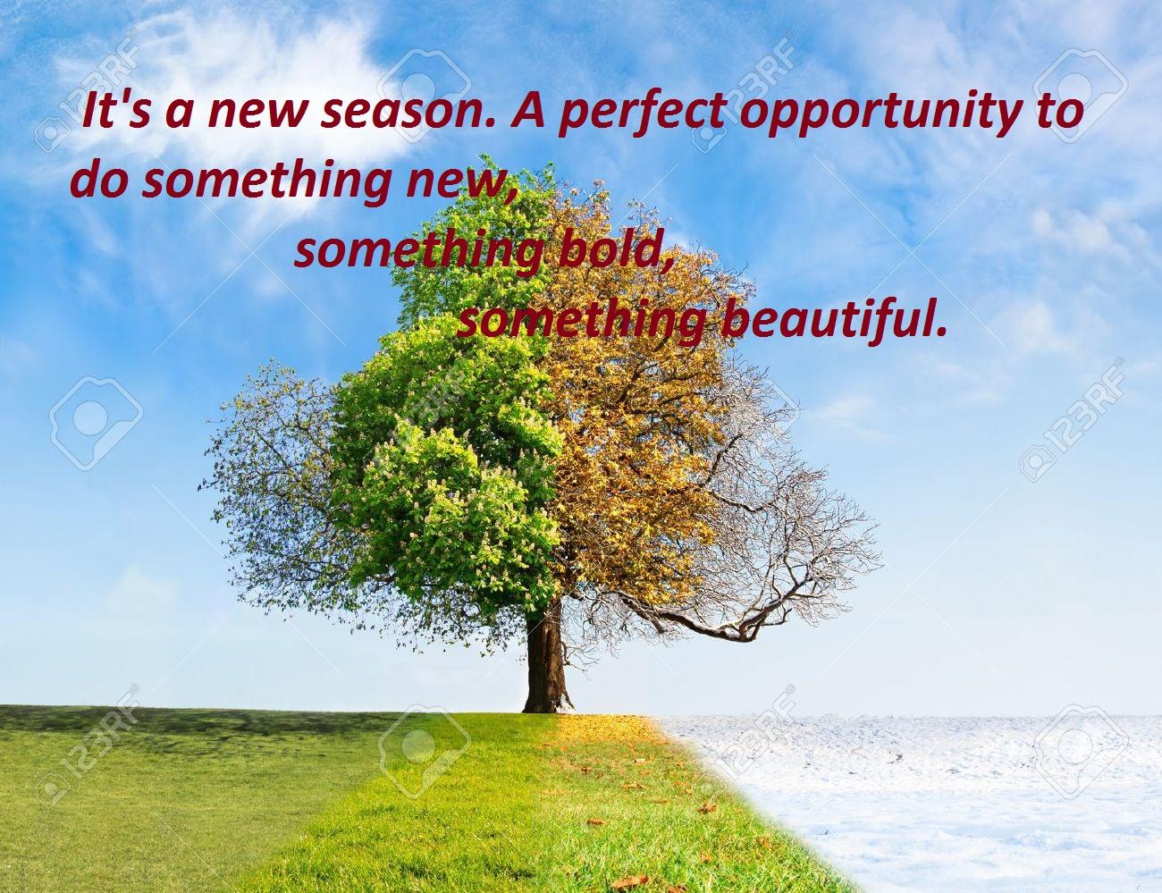 Seasons Change Quotes