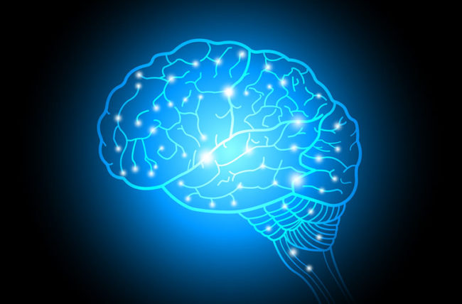 Amazing Facts You Didn't Know About Your Brain – Cleveland Clinic