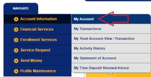 BDO Online Balance Inquiry: Fast, Easy, and Convenient