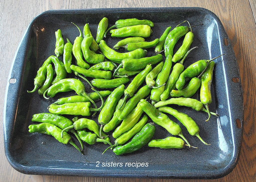 fresh Shishito Peppers in a baking pan by 2sistersrecipes.com
