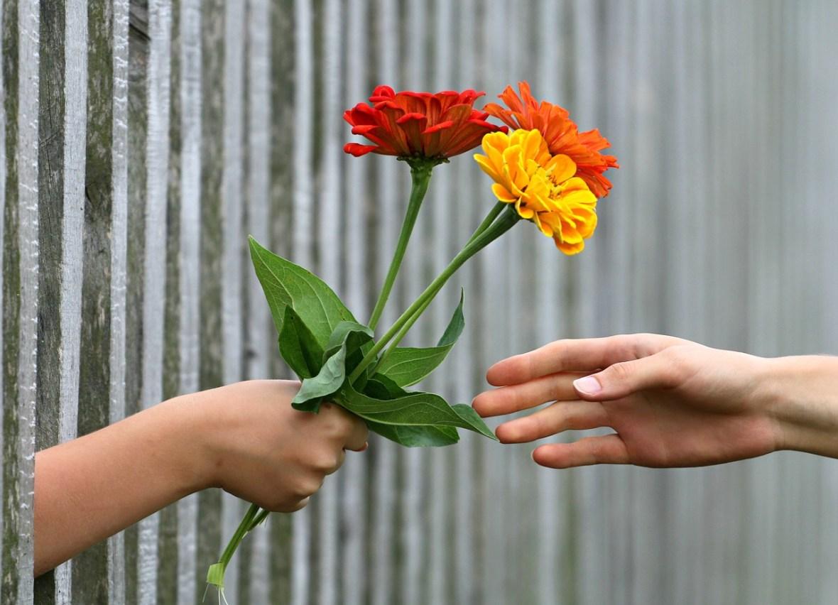 gift-flowers-hands_klimkin