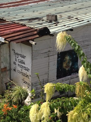 This is one of the few wooden structures in the area. Often poetry and artwork are done on these buildings.