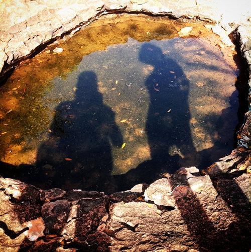 waterberg waterhole instagram