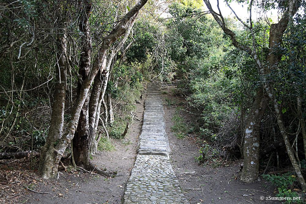 Dweasa steps