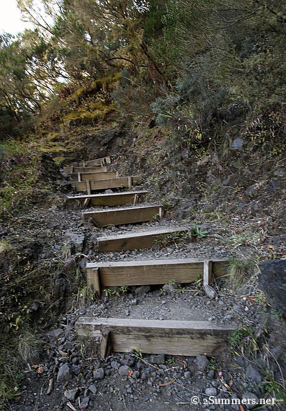 12-Hike-steps