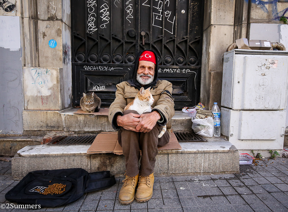 Istanbul cats-9624