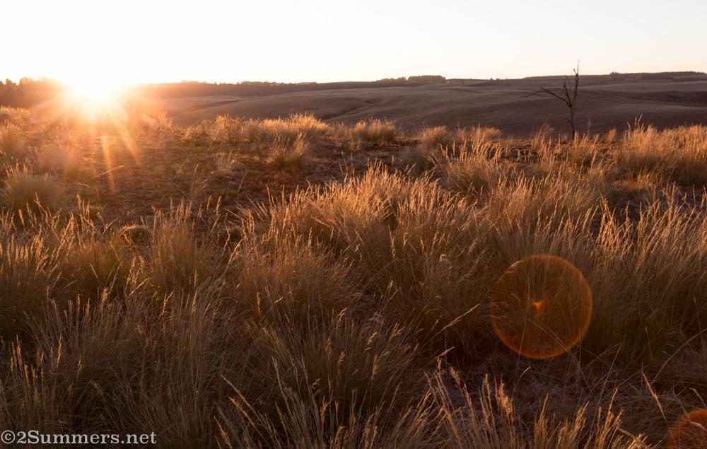 Sunrise at Brahman Hills