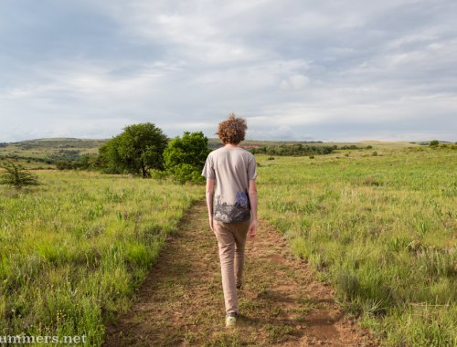 Ray walking at Stone Hill, a dog-friendly self-catering property in Magaliesburg