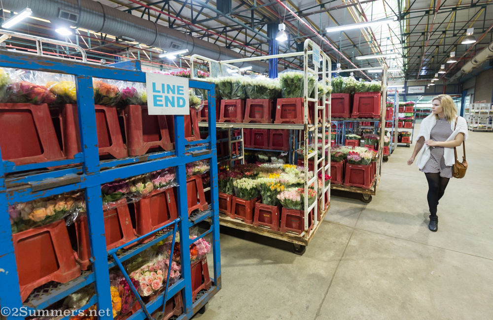 Lady in Multiflora warehouse