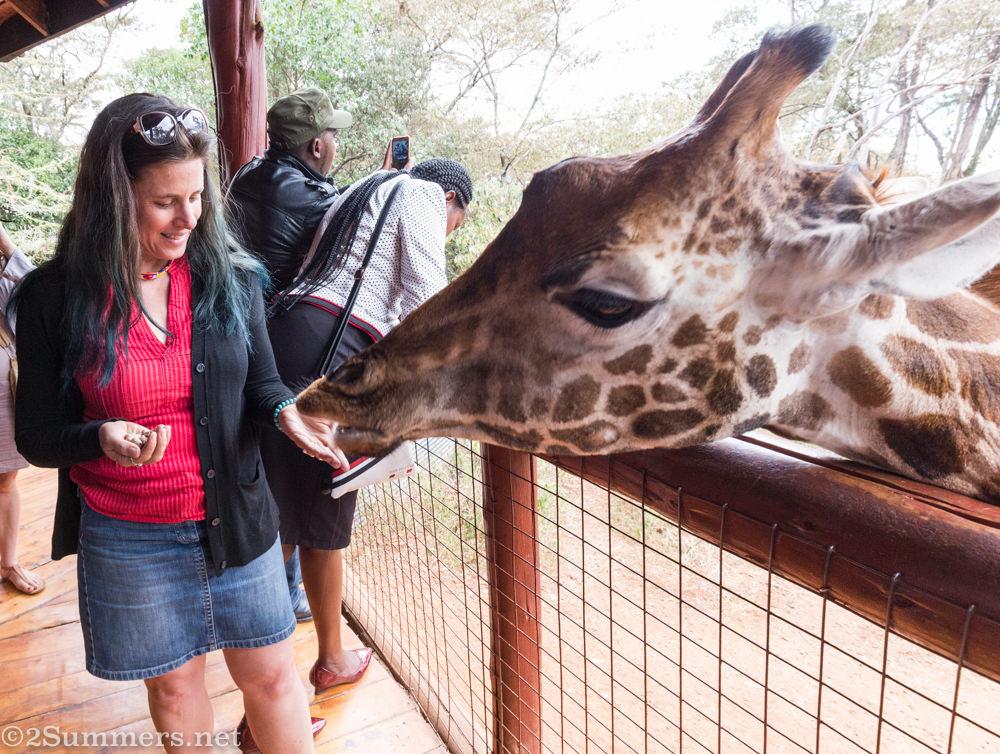Heather feeding a giraffe