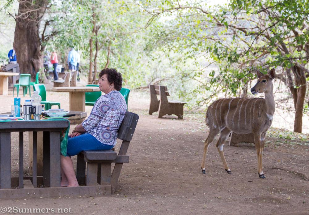 Lady and nyala at Pafuri picnic spot