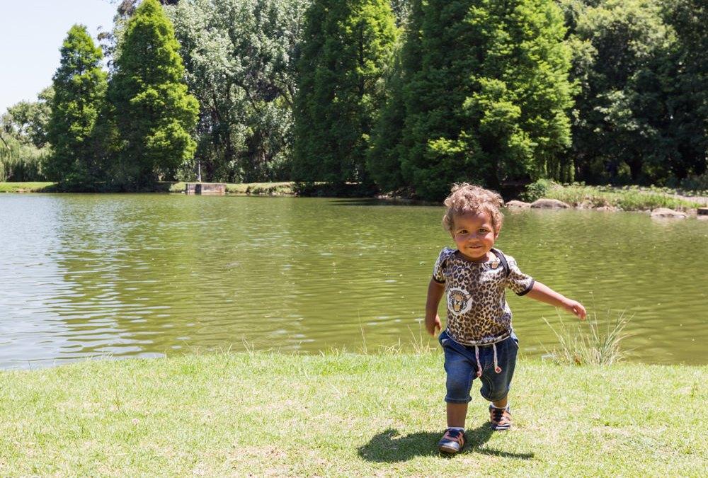#Gauteng52, Week 42: Kensington's Rhodes Park