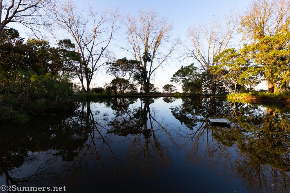 Pond at Kings Walden