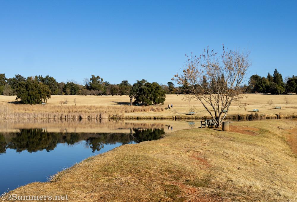 Dog park section of Emmarentia Dam