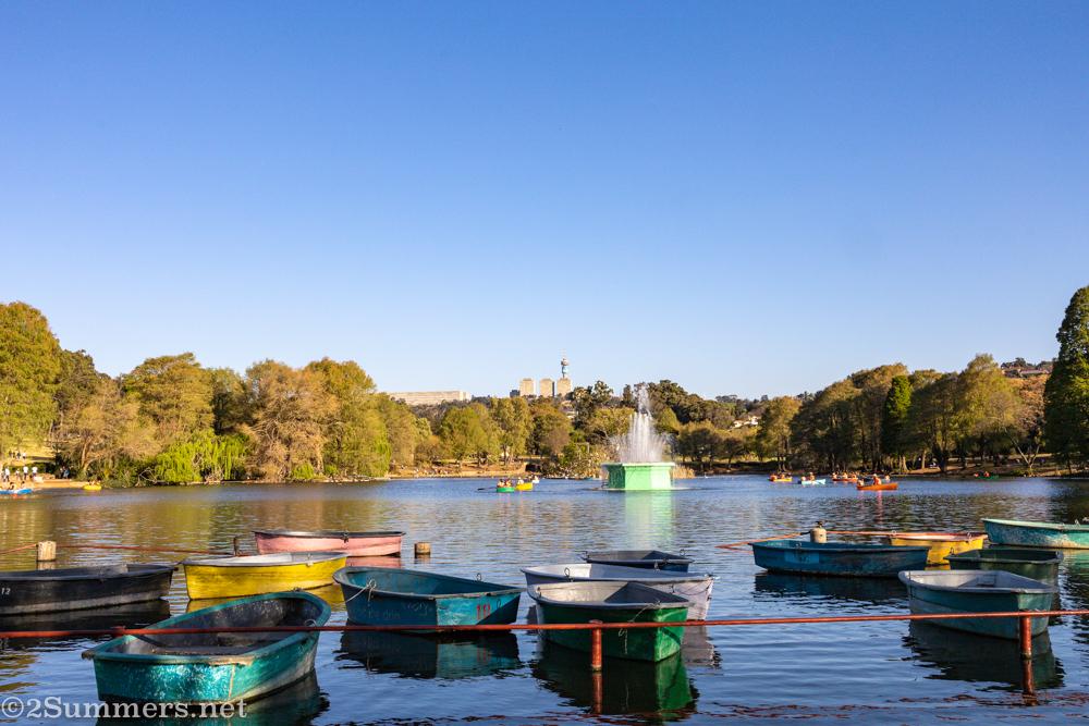 Zoo Lake row boats