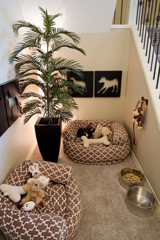 Beautiful doggy corner, don't you think?