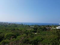 A view of the Pacific