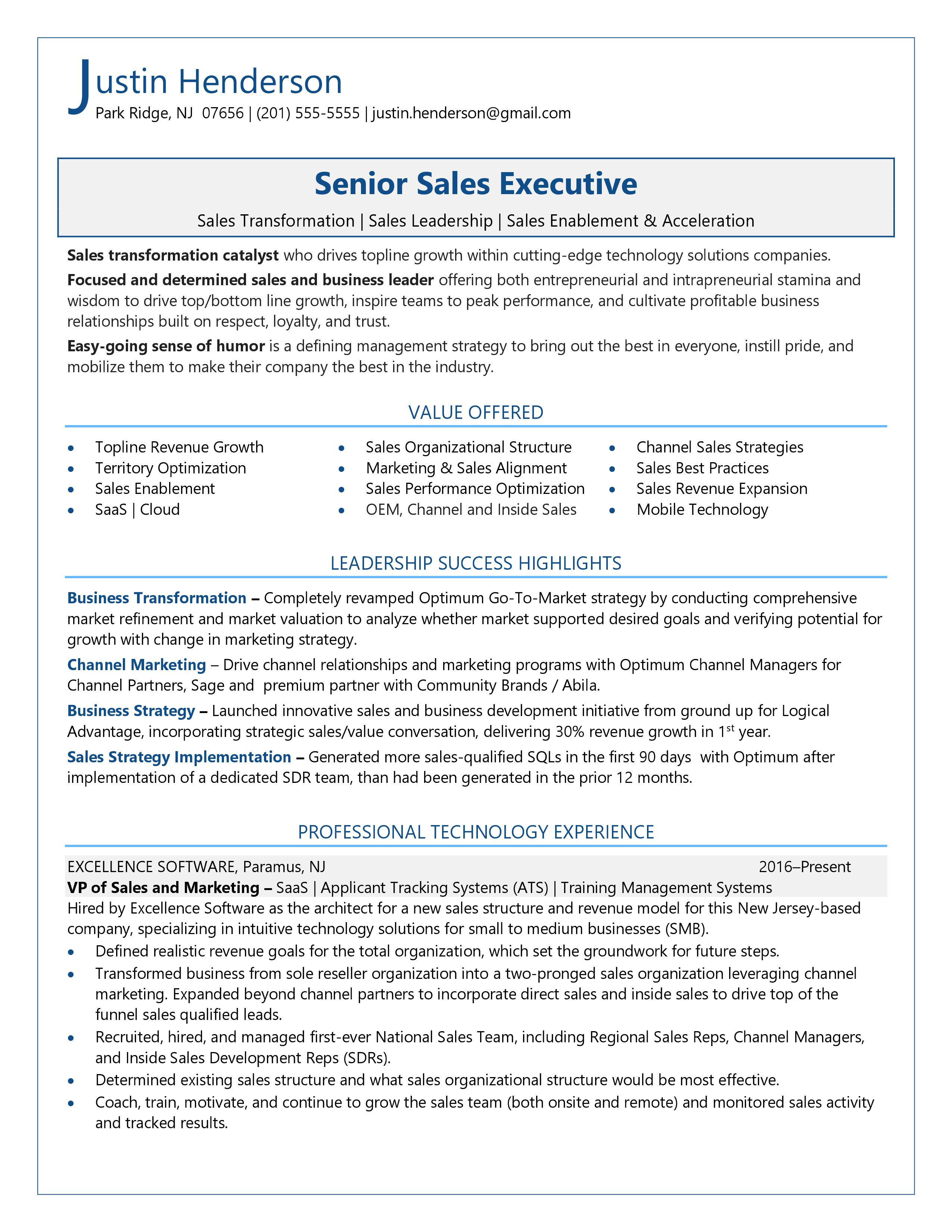 sample resume of vice president sales
