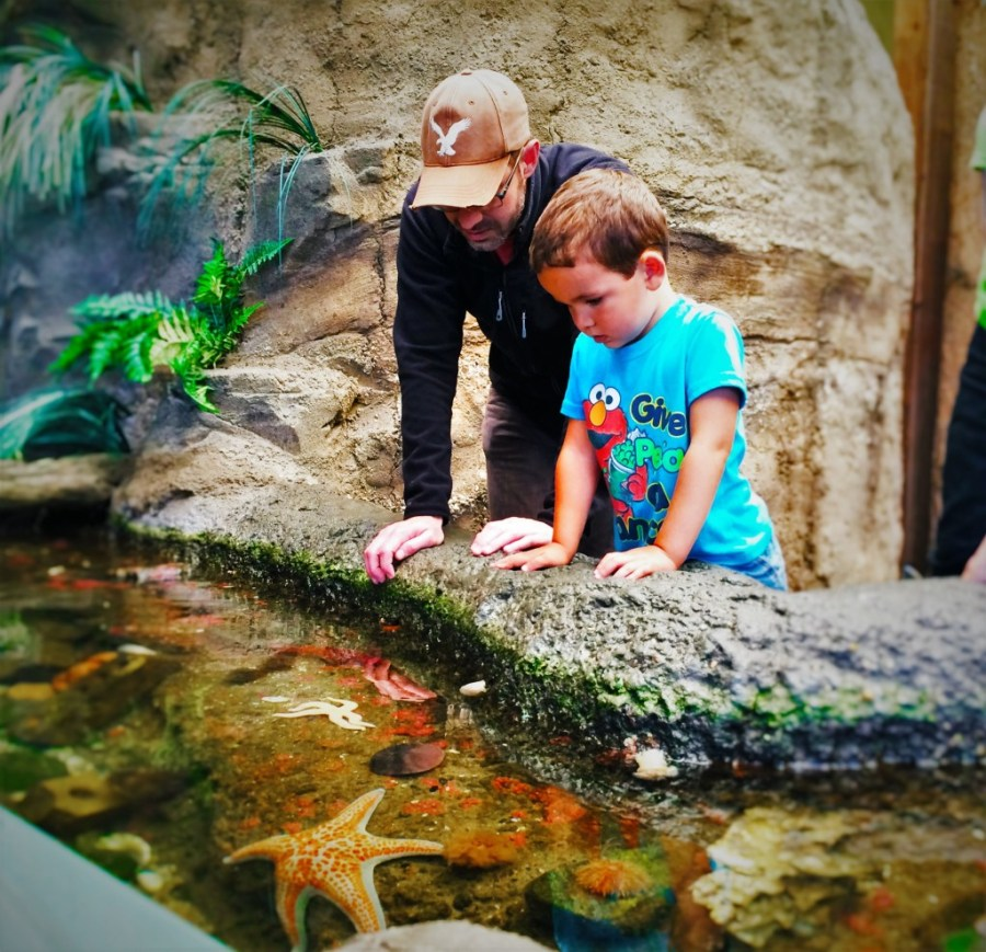 Chris Taylor and LittleMan at Touch Tank Poulsbo Aquarium