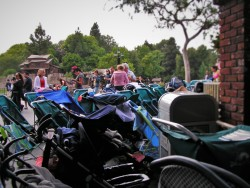 Strollers parked in Disneyland 1