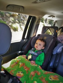 LittleMan on Taylor Family Roadtrip