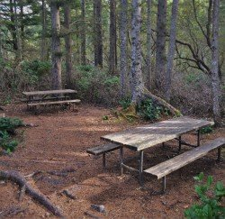 Picnic Tables Cape Flattery Trail Olympic Peninsula