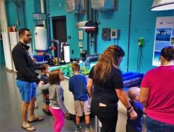Coral Farm Tank Behind the Scenes Georgia Aquarium