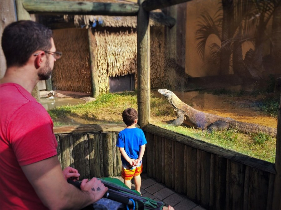 Chris Taylor and Dudes with Komodo Dragon at St Augustine Alligator Farm 1
