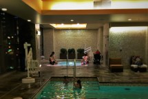 Swimming Pool Hyatt Olive 8 Seattle 2 - Travel Dads