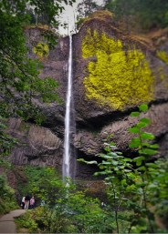Latourell Falls Columbia Gorge Waterfall Area Oregon