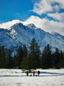 People Walking Huskies in Snow at Sleeping Lady Resort Leavenworth WA 2traveldads.com